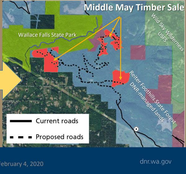 Middle May timber sale map