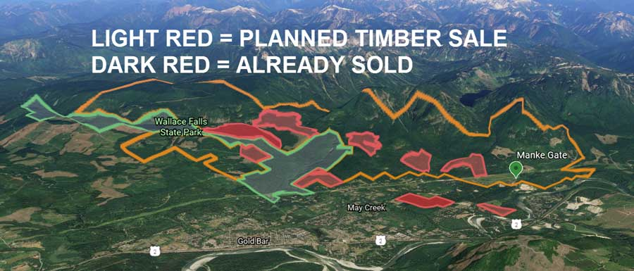 Map of planned timber sales near Gold Bar