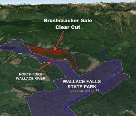Close-up of Brushcrasher timber sale
