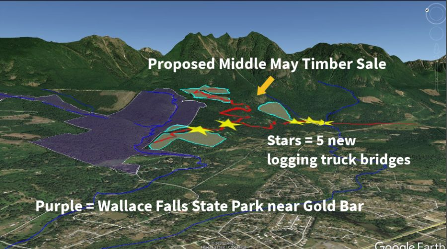Map of Middle May timber sale near Gold Bar