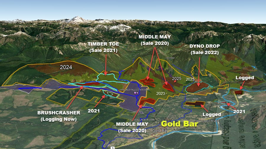 Map of timber sales planned for Gold Bar by DNR